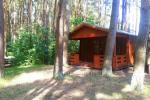 Wooden House Rent in Sventoji, in pine forest