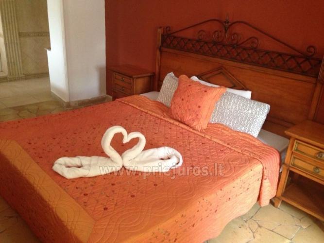 Ein-und Zwei-Zimmer-Wohnung Miraverde für die Erholung auf Teneriffa - 13