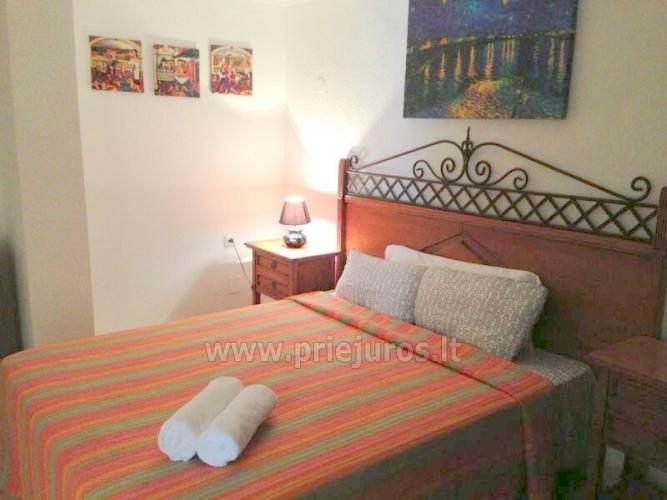 Ein-und Zwei-Zimmer-Wohnung Miraverde für die Erholung auf Teneriffa - 17