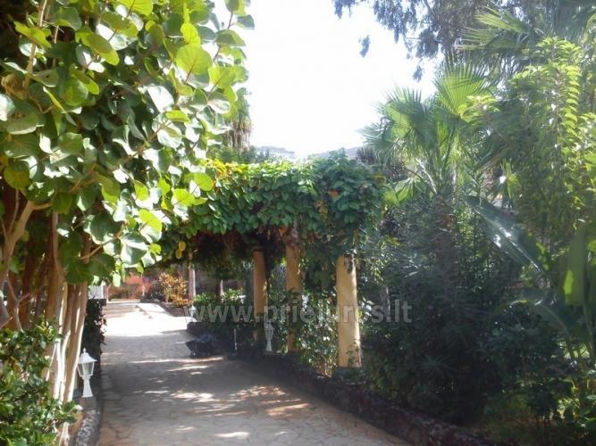 Ein-und Zwei-Zimmer-Wohnung Miraverde für die Erholung auf Teneriffa - 22