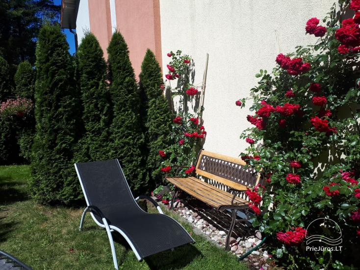 Cottage (apartment for 4-6 persons) with spacious yard, terrace in Palanga, in Vanagupes str. - 15