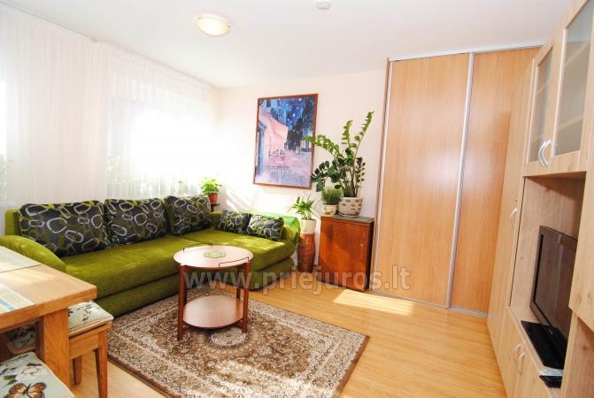 Labai jaukus dviejų kambarių butas Nidoje - 2
