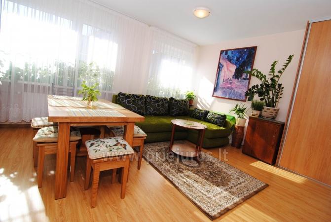 Labai jaukus dviejų kambarių butas Nidoje - 3