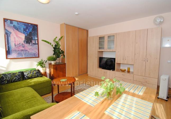 Labai jaukus dviejų kambarių butas Nidoje - 5