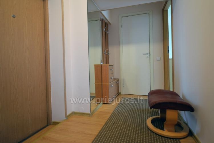 Labai jaukus dviejų kambarių butas Nidoje - 9
