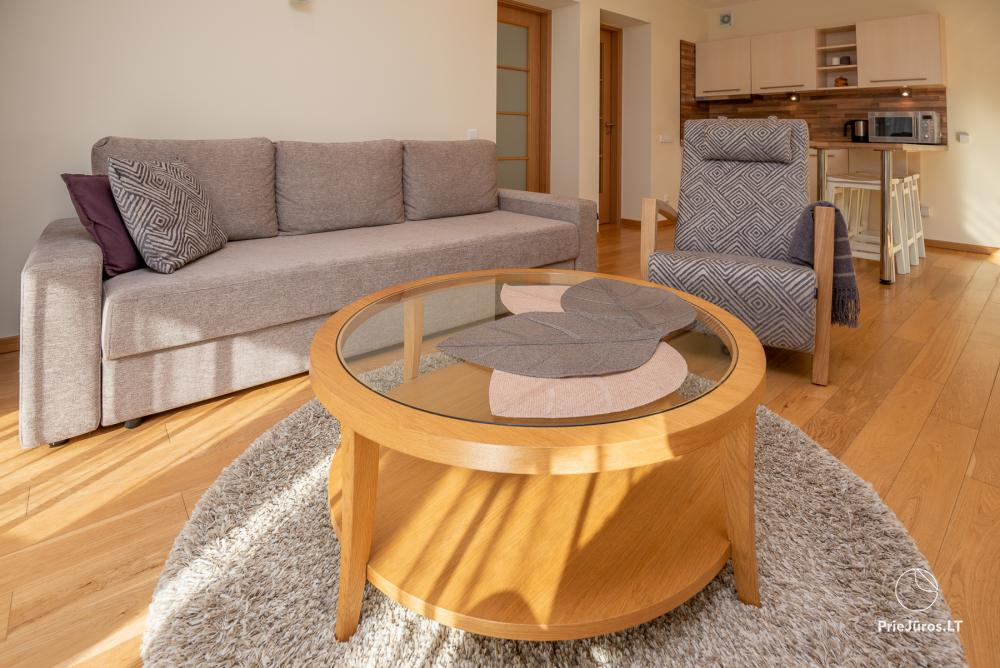 Modern two rooms apartment with large terrace in Curonian Spit, Juodkrante - 10