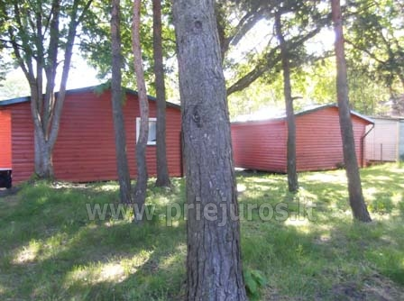 Neue Ferienhütte Elnias ganz in der Nähe des Meeres in Sventoji - 17