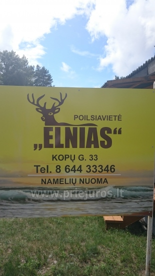 Neue Ferienhütte Elnias ganz in der Nähe des Meeres in Sventoji - 37