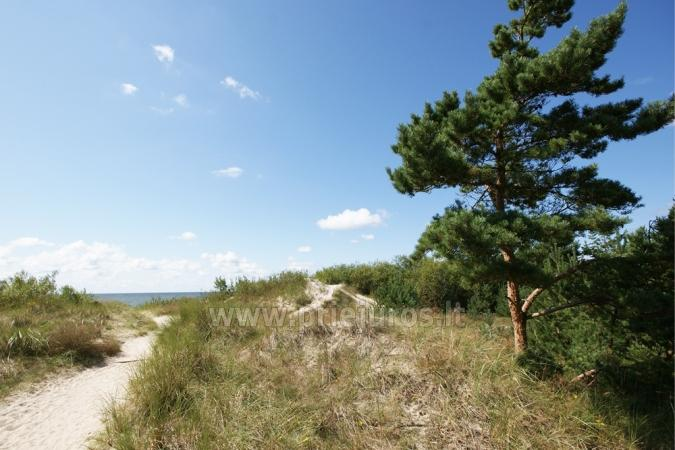 Newly furnished 2 room apartment in the center of Palanga, on the ground floor of a house - 15