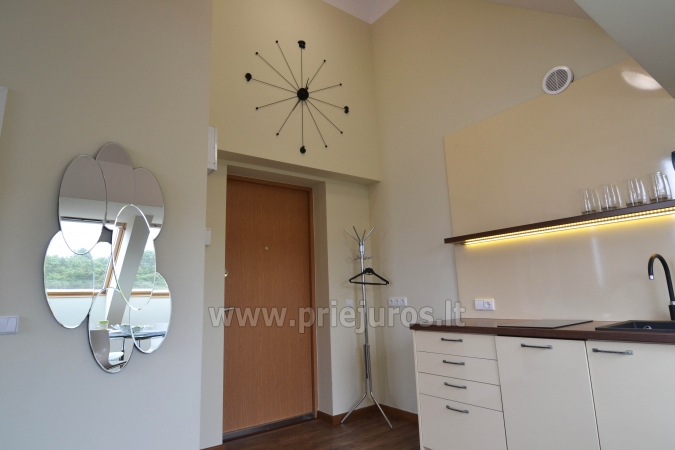 Well-equipped two rooms apartments with the view to the lagoon in Nida - 6