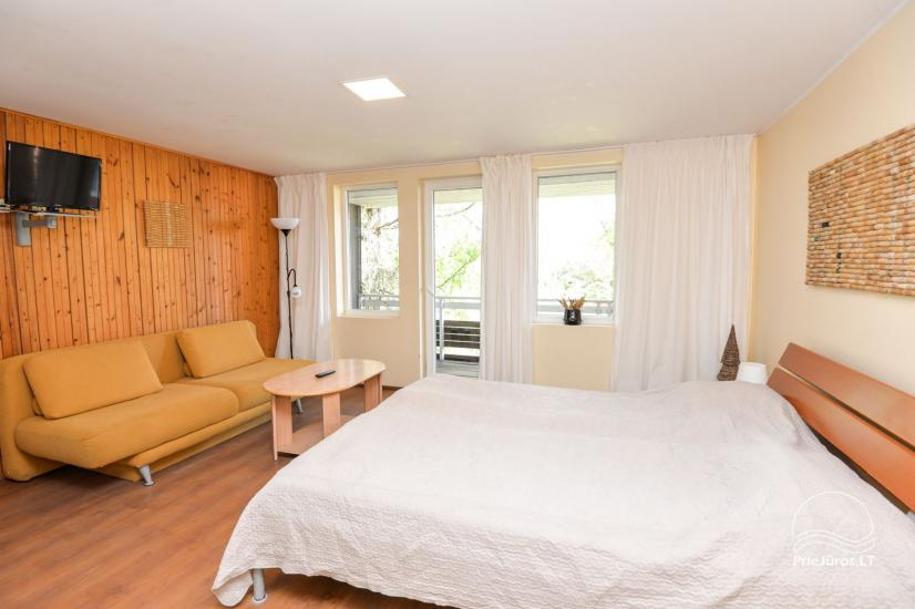 Apartments in Neringa: Terrasse / Balkon mit Blick auf die Lagune, Wi-Fi - 9