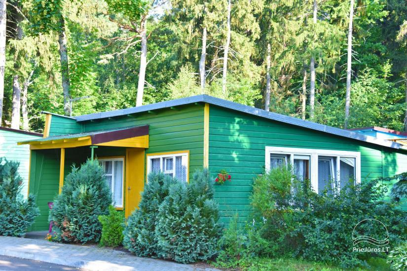 Holiday houses for rent in Juodkrante - 1