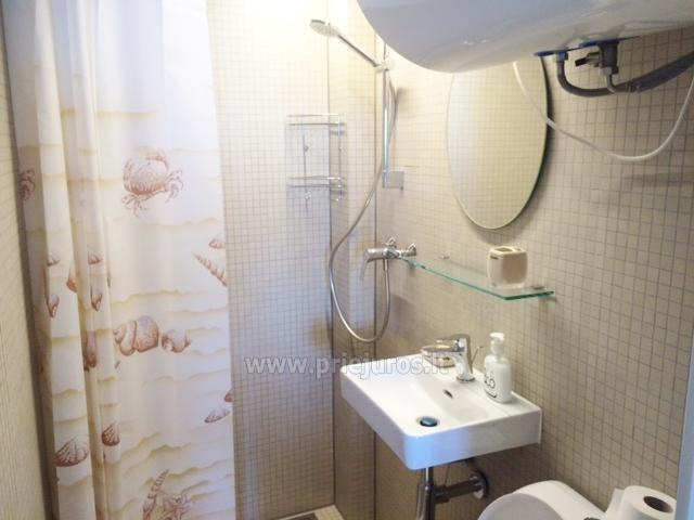 Flat (20 sq.m.) for rent in Nida - 6