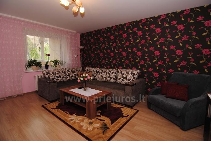 Zimmer oder zwei Zimmer-Wohnung zur Miete in Nida, Kurische Nehrung - 2