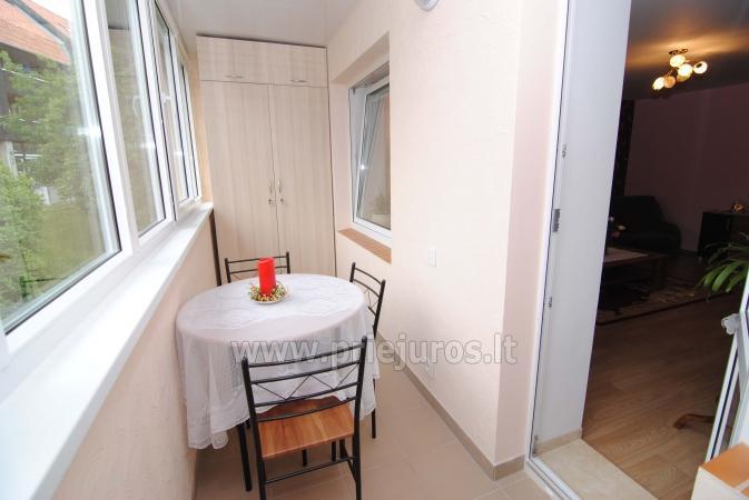 Zimmer oder zwei Zimmer-Wohnung zur Miete in Nida, Kurische Nehrung - 5