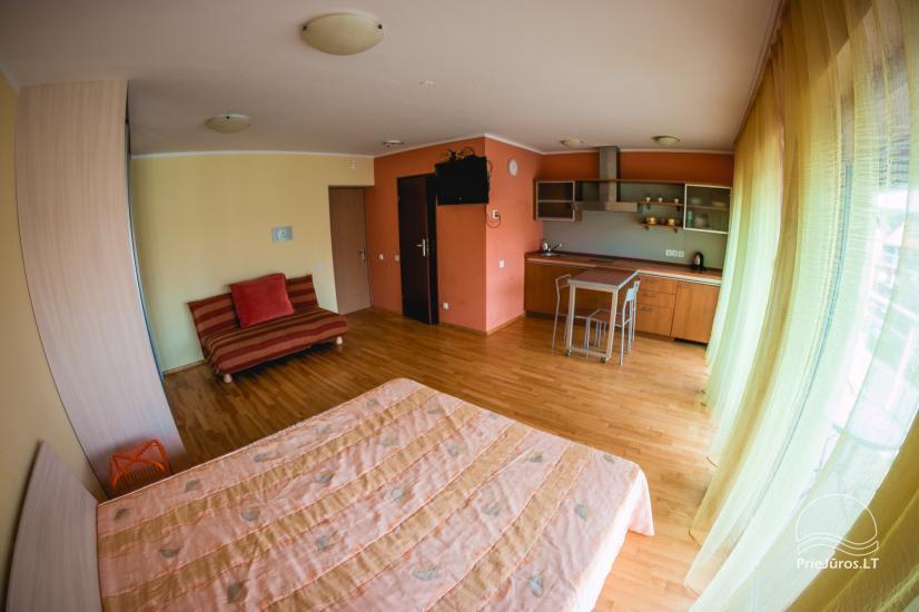 Vieno, dviejų kambarių apartamentai nuomai Nidos centre - 3