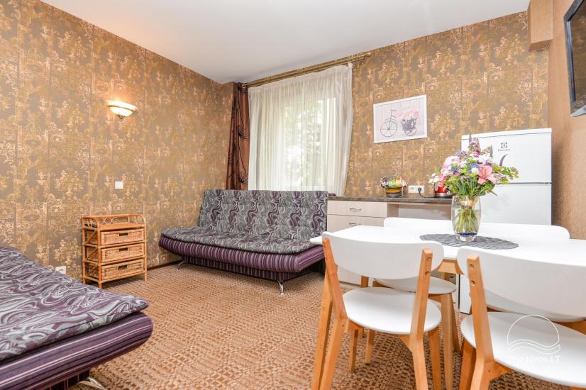 Accommodation in Palanga villa VAKARE. In the yard: summerhouses with outdoor furniture, playground for kids - 30