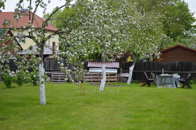Ferienwohnung und Ferienhäuser zu mieten in Sventoji - 9