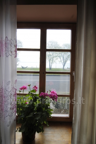 Flats and rooms for rent in Juodkrante - 6