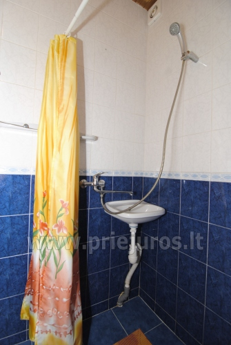 Flats and rooms for rent in Juodkrante - 11