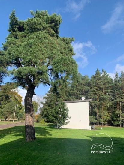 Luxuriös Haus zur Miete Pusyno Oaze: Jacuzzi, Schwimmbad, Terrasse - 15