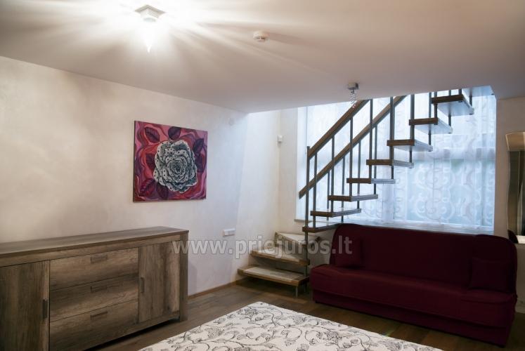 Erdvūs 2 kambarių apartamentai su atskiru įėjimu ir terasa, yra WiFi - 7