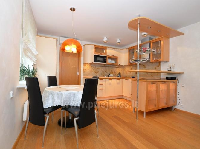 Erdvūs 2 kambarių apartamentai su atskiru įėjimu ir terasa, yra WiFi - 3