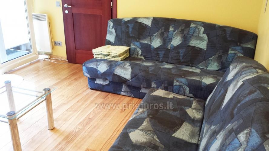 3 kambarių buto nuoma Juodkrantėje, šalia miško ir marių - 9