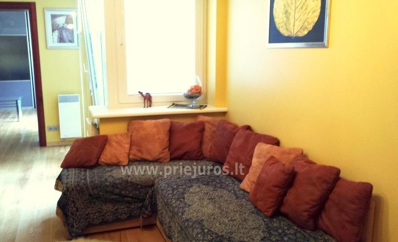 Two-bedroom apartment for rent in Juodkrante, near  lagoon and forest - 5