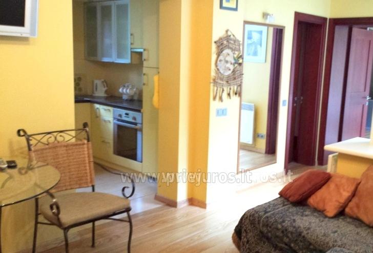 Two-bedroom apartment for rent in Juodkrante, near  lagoon and forest - 4