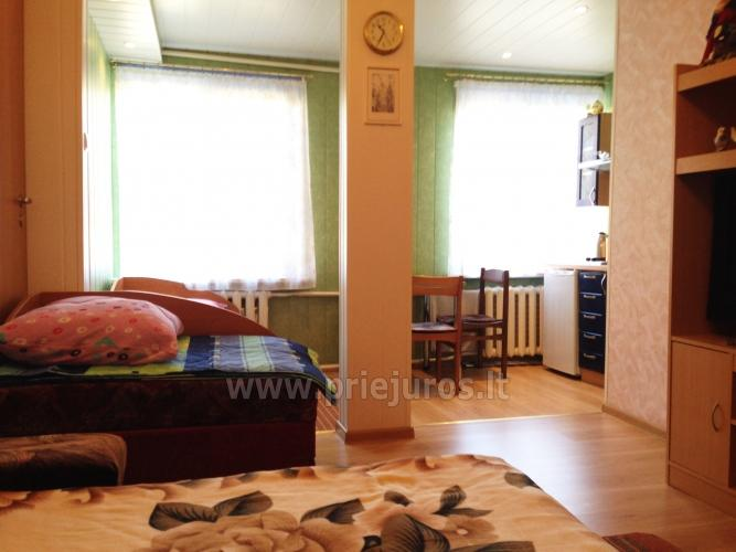 1 room condo rent in Juodkrante near Curonian lagoon - 1