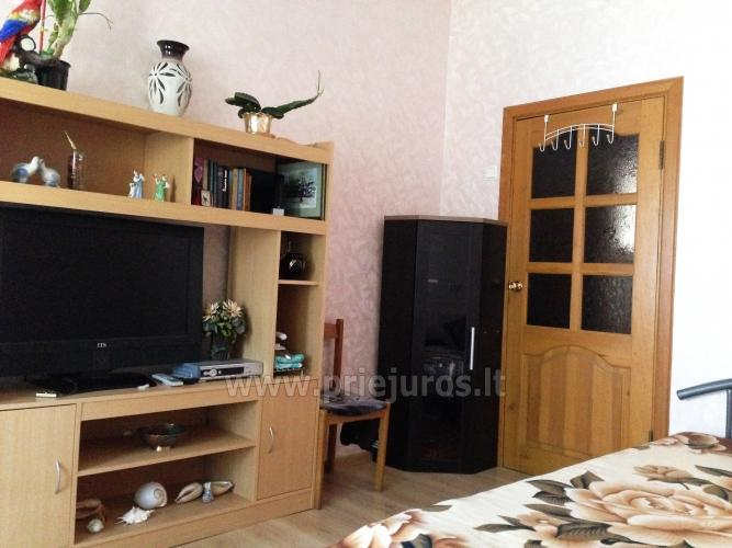 1 room condo rent in Juodkrante near Curonian lagoon - 3
