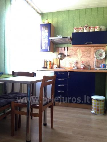 1 room condo rent in Juodkrante near Curonian lagoon - 4