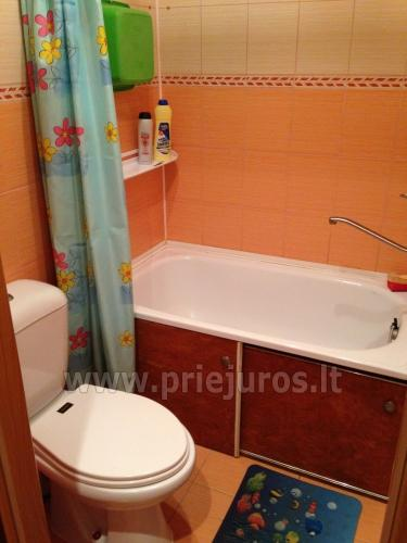 1 room condo rent in Juodkrante near Curonian lagoon - 6