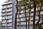 S. Daukanto g. 10, Palanga. Pajūrio rezidencijos apartamentų - buto nuoma - 8