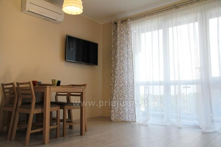 Modern two rooms apartment with a view of the Curonian lagoon - 3