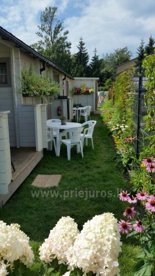 Smelio smiltys - Holiday houses for rent in Palanga (300 m. to the sea) - 9