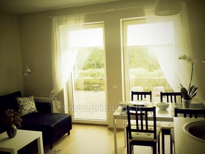Quadruple scandinavian style apartment in Palanga - 7