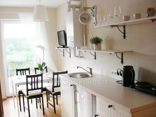 Quadruple scandinavian style apartment in Palanga - 10