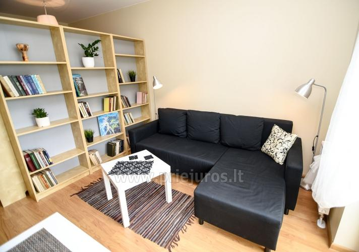 Quadruple scandinavian style apartment in Palanga - 4