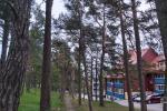 PRIE PUŠYNO - 2