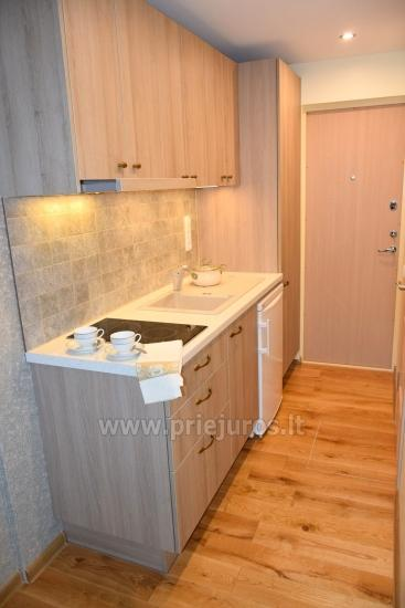 Newly furnished flat in center of Nida NEAR THE PINEWOOD - 9