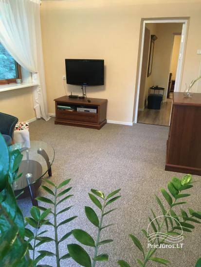 Zwei Zimmer Wohnung mit Terrasse in Kurische Nehrung - 2
