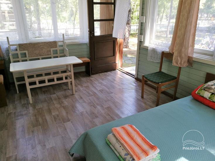 Kambarių ir namelio nuoma labai patogioje vietoje, 200m iki jūros! - 10
