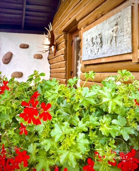 Namuko su terasa nuoma Kunigiškėse - 1