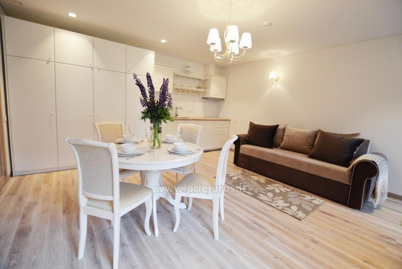 Guest house SMELYNAS - luxury apartments for rent in Preila - 2