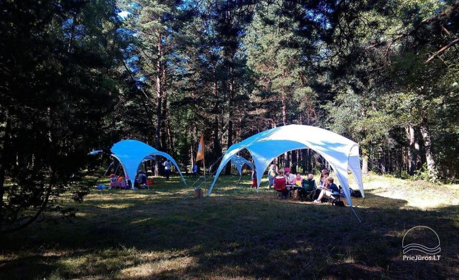Summer English Camp for 6-17 year kids Narnia-2020 English OUTDOORS - 8