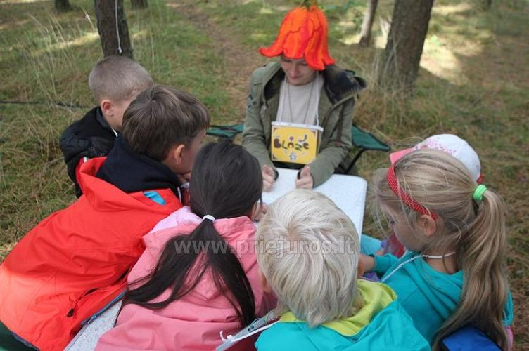 Summer English Camp for 6-17 year kids Narnia-2020 English OUTDOORS - 3