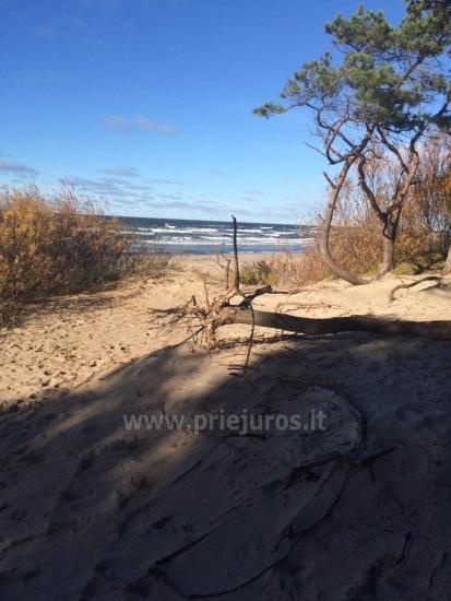 Well furnished cottages for rent in Palanga, 150 meters to the sea - 9