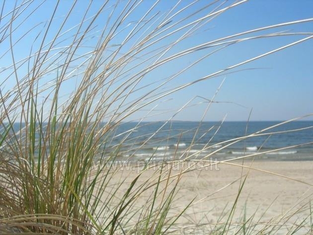 """Poilsiavietė """"Paplūdimys"""" - 45"""